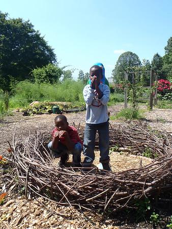 HA-060813-Arboretum
